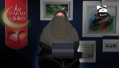 Piyar Mohabbat aur Ishq - Episode 12